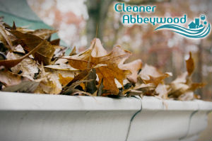 gutter-cleaners-abeey-wood